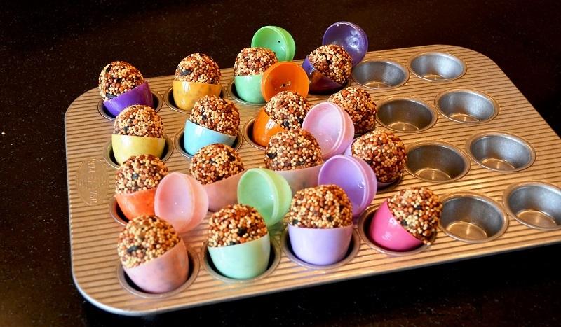 Déposez les petits œufs remplis de graines pour oiseaux dans les compartiments d'un grand moule à muffins ou, si le vôtre n'est pas assez grand, répartissez-les dans deux moules à muffins. Ensuite, ouvrez précautionneusement les œufs en soulevant délicatement la plus partie de l'oeuf (partie inférieure de l'oeuf). Si c'est difficile, tapoter un peu la couture de l'oeuf. Laissez sécher le mélange de graines pendant environ 2 heures.
