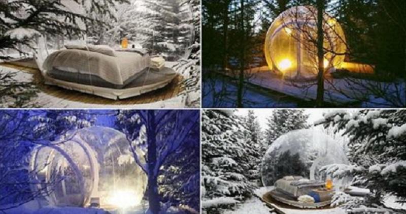 en islande vous pouvez dormir dans des bulles en pleine nature au coeur de la for t. Black Bedroom Furniture Sets. Home Design Ideas