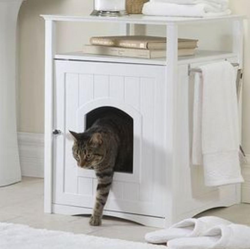 Ouverture pour chat
