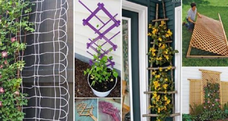 13 ing nieuses fa ons de cr er votre propre treillis de jardin for Amenagement jardin avec bambou