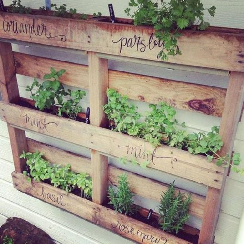 12 Idées Pour Créer Une Déco Cosy Dans Son Salon Cet Hiver: 12 Magnifiques Idées Pour Faire Pousser Des Fines Herbes à