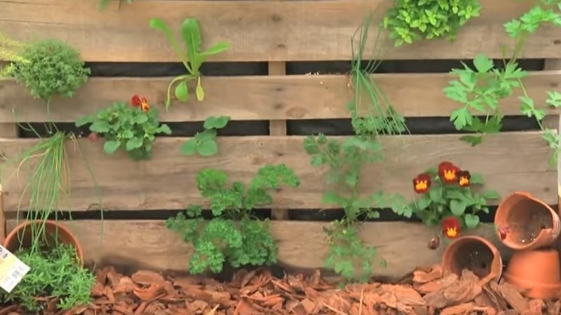 Comment faire un potager vertical avec une palette de bois - Comment faire un jardin vertical ...